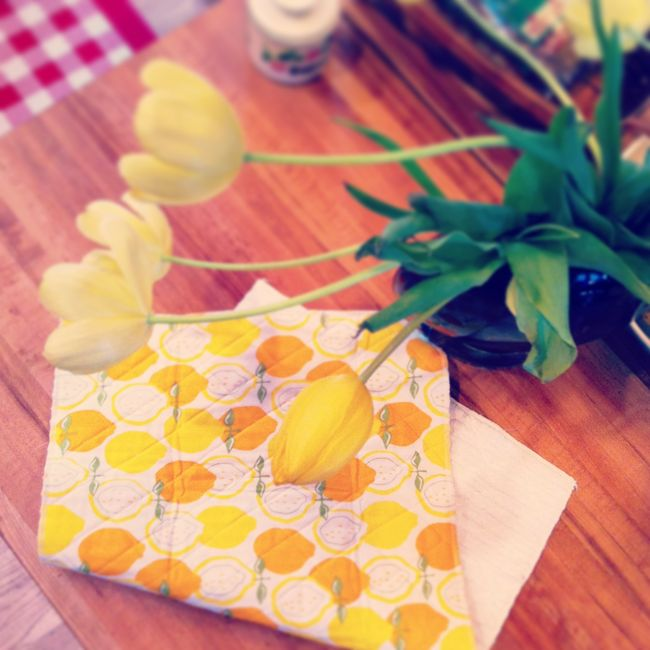 Tulips and dishmat